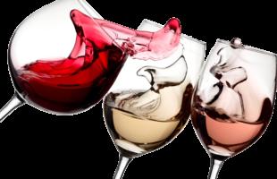 Dégustation de vins team building paris insolite