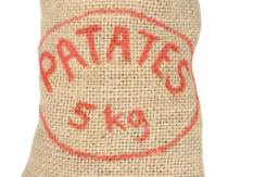 course en sac à patate team building paris insolite